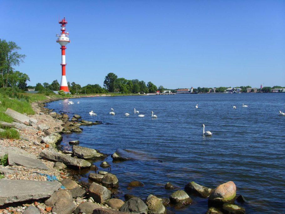 Балтийская кома в Калининградской области