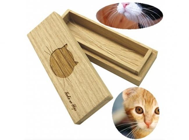 Коробка для кошачьих усов