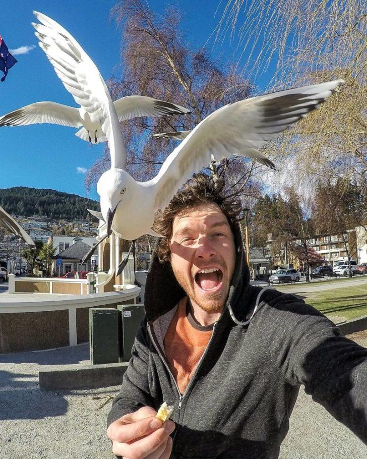 Селфи с чайкой
