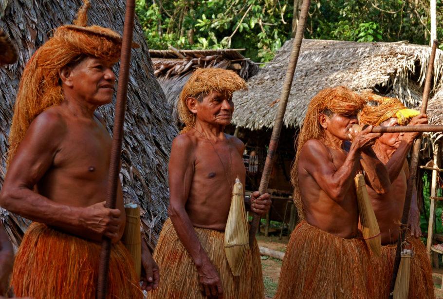 Резервации индейцев в Бразилии