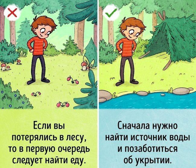 Что делать, когда вы заблудились в лесу