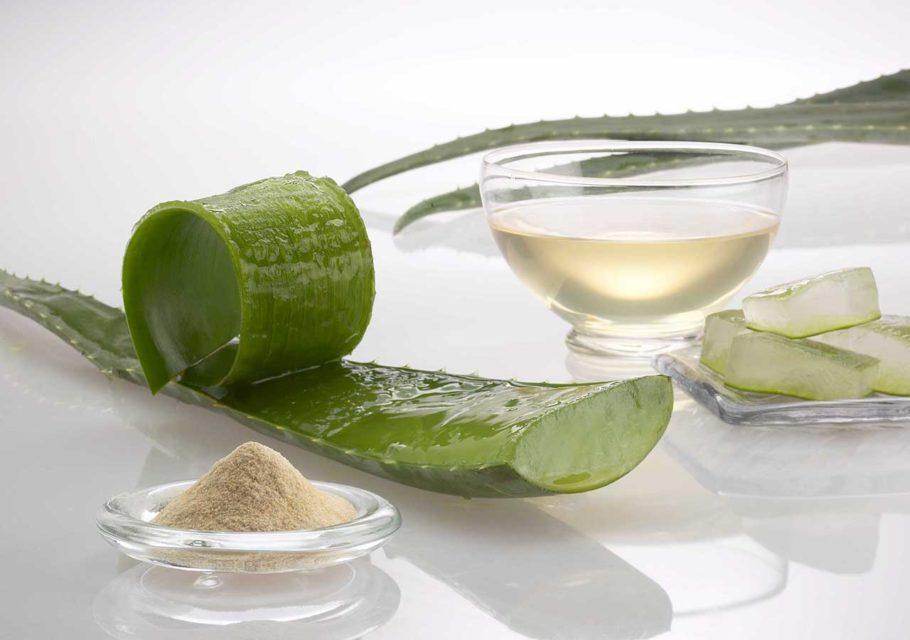 Разрезанный лист алоэ и сок растения