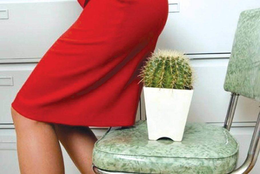женщина присаживается на кактус на стуле