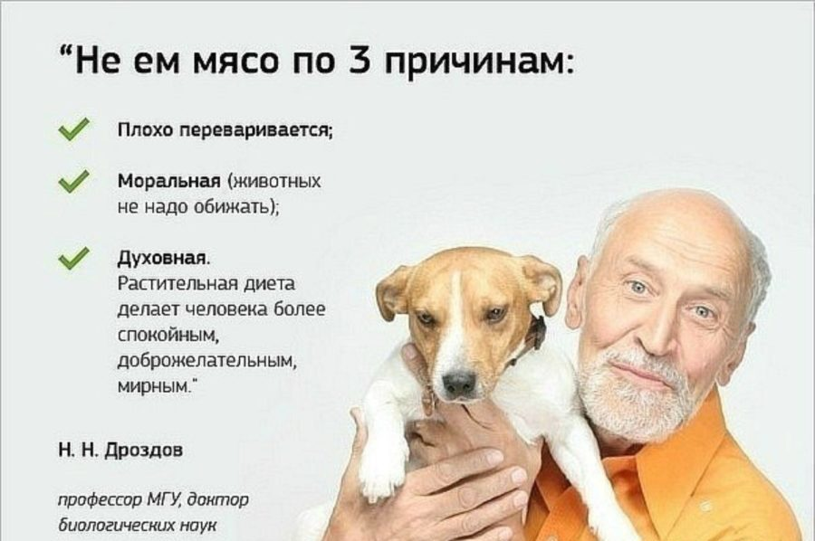 почему Н. Н. Дроздов не ест мясо