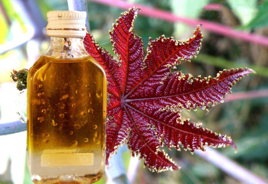 Бутылочка с маслом на фоне листика