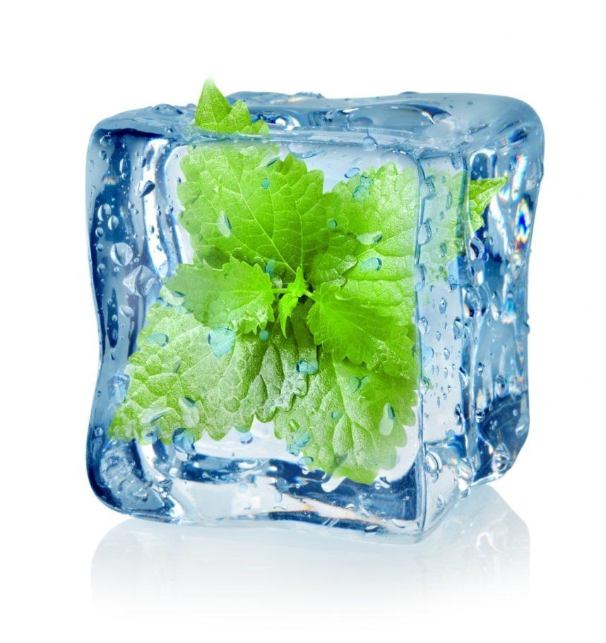 лед с замороженным листиком внутри