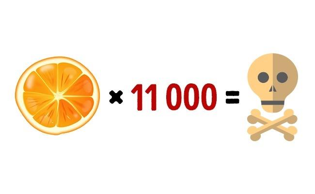 11000 апельсинов смертельно для человека за раз