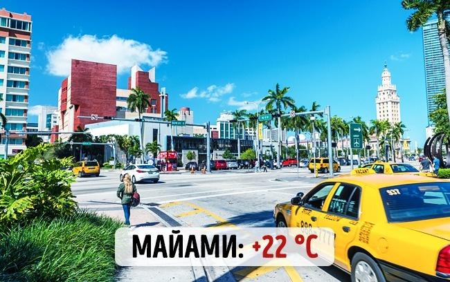 Американский Майами: +22 градуса по Цельсию
