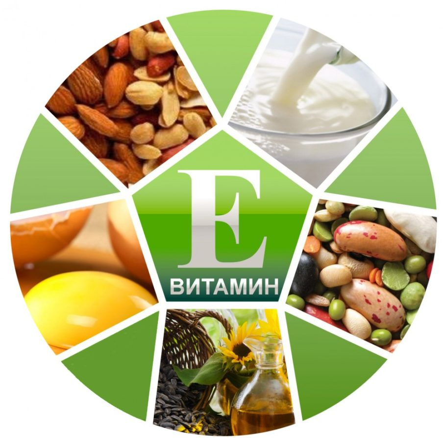 рисунок продукты с витамином E