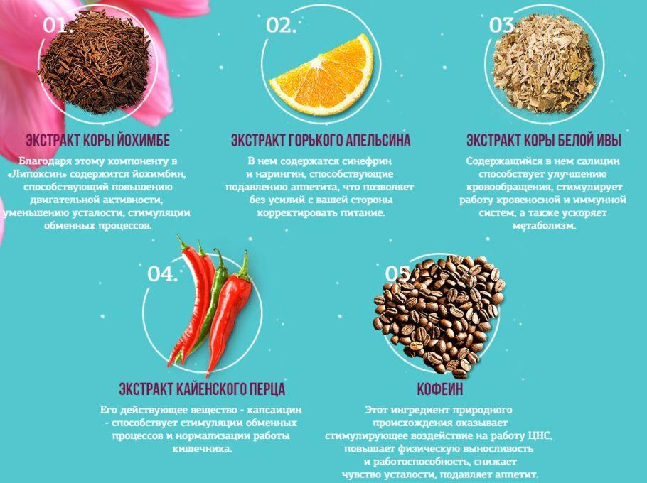 состав средства для похудения Липоксин
