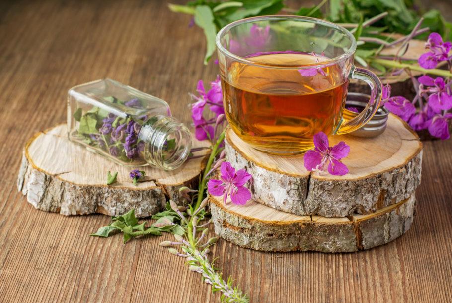 Чашка с чаем и растение иван-чай