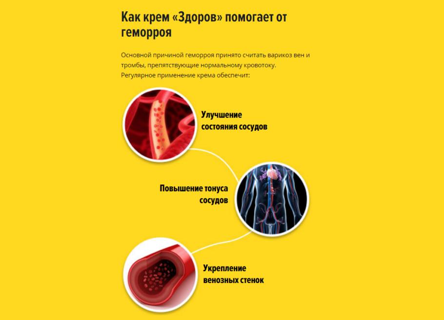 Воздействие крема Здоров от геморроя