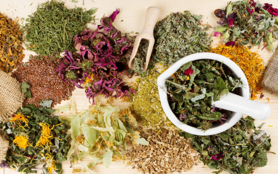 разные лекарственные травы