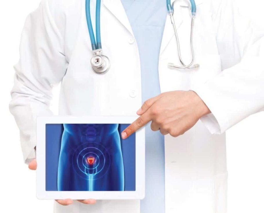 врач показывает пальцем на картинку с мужским пахом