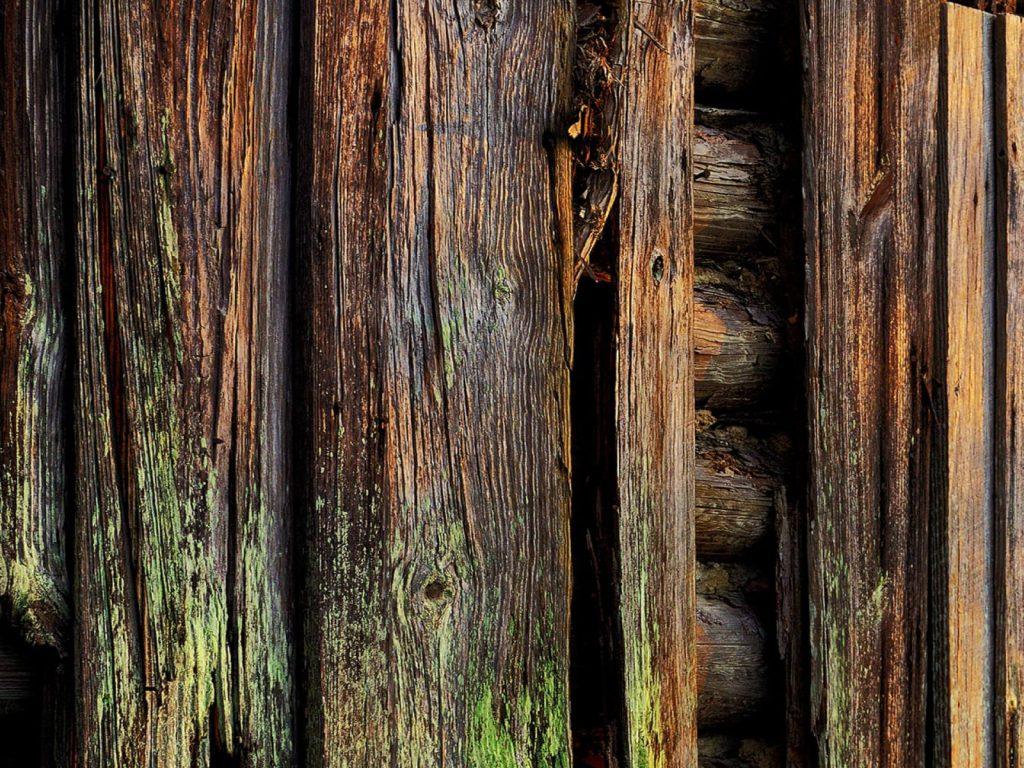 защита дерева от влаги и гниения