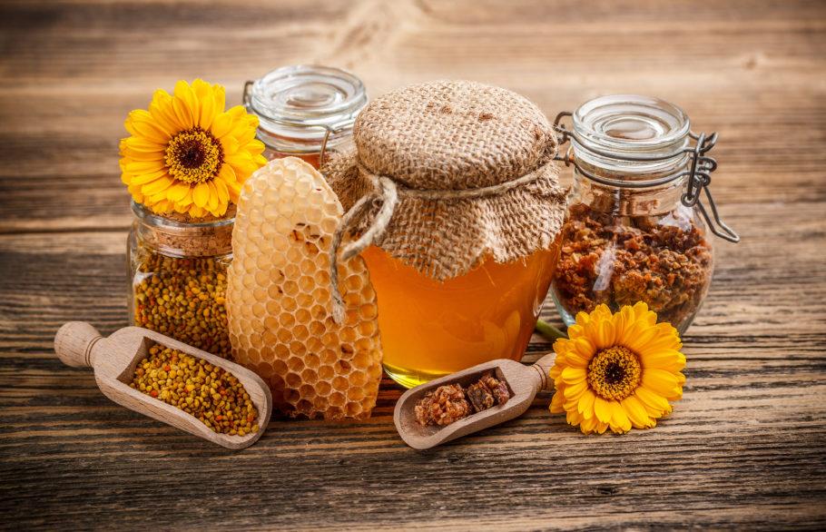 мёд, соты, подсолнух