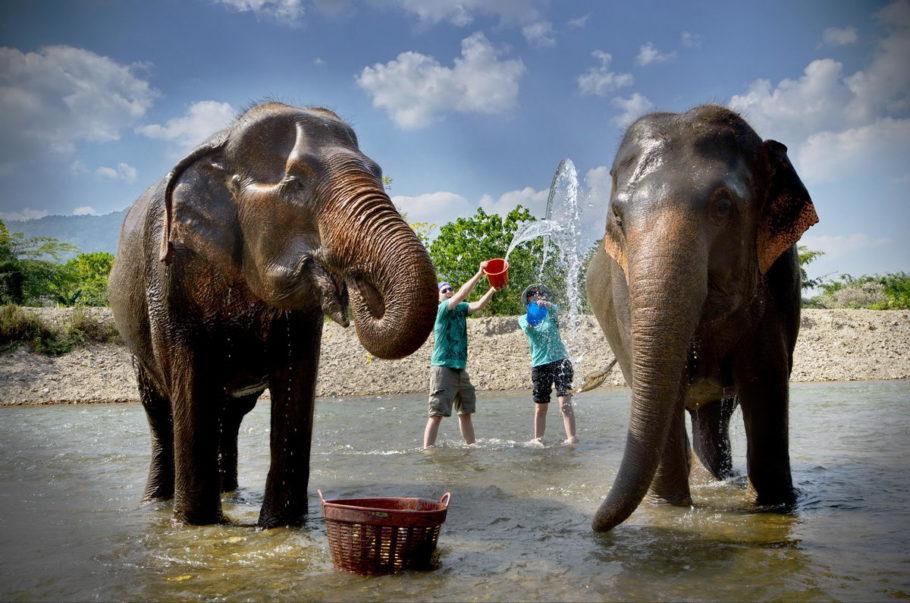 Таиланд, «Королевство слонов»