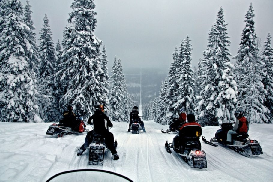 люди на снегоходах