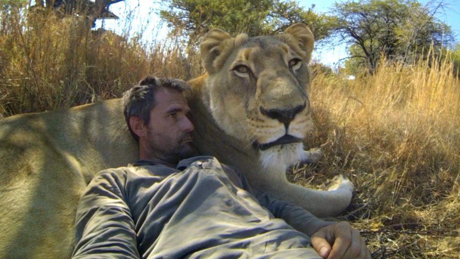 Селфи с львицей