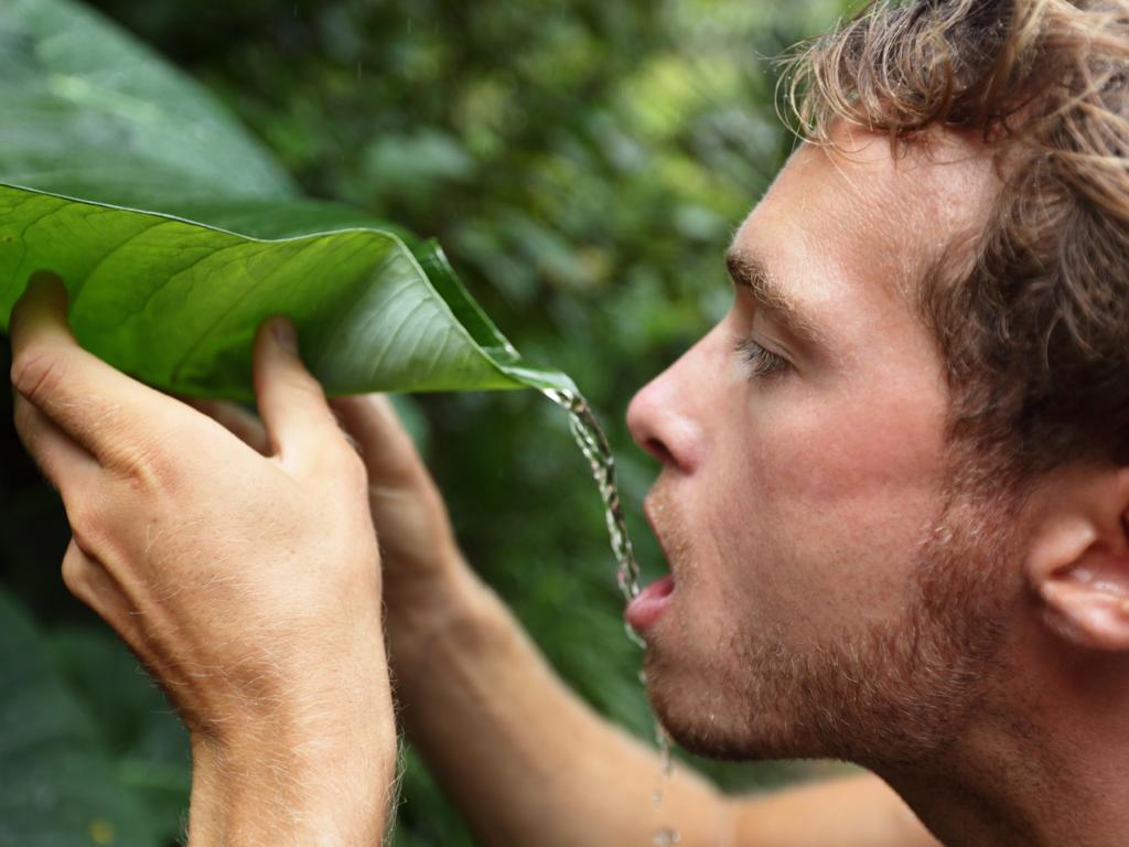Мужчина пьет воду из листа дерева