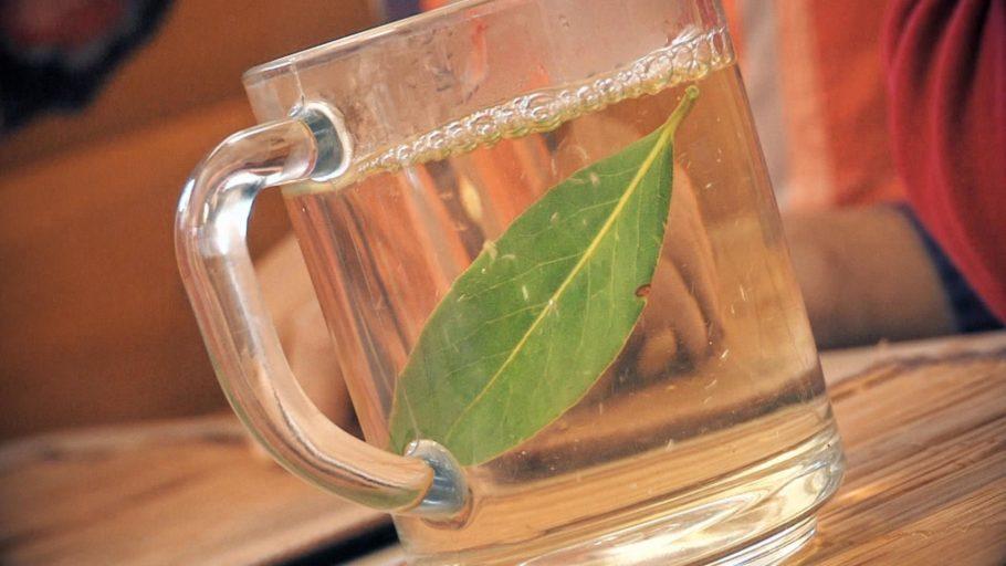 Лавровый лист в чашке с жидкостью