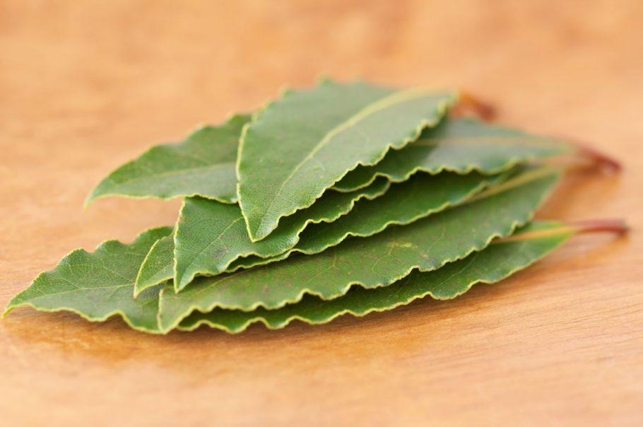 стопка лавровых листов