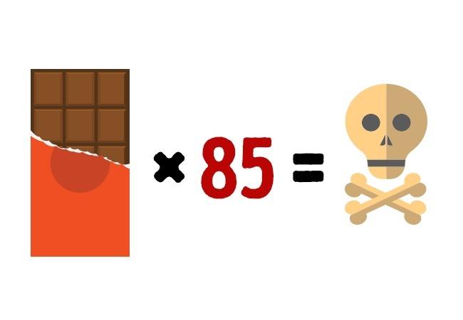 Сьев 10 кг шоколада можно умереть