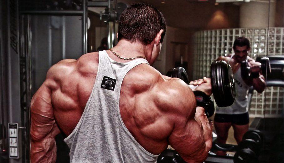 Для начинающих приоритетом должны стать широчайшие мышцы спины, на втором месте разгибатели спины и трапеция