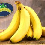 Вся правда о бананах: вред или польза