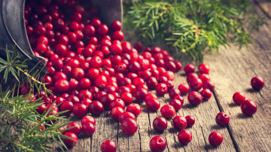 Биологически активные вещества ягоды способствуют очищению стенок кровеносных сосудов
