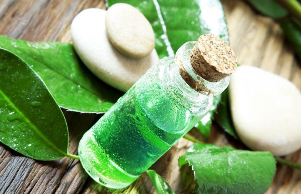 Бутылочка с маслом чайного дерева
