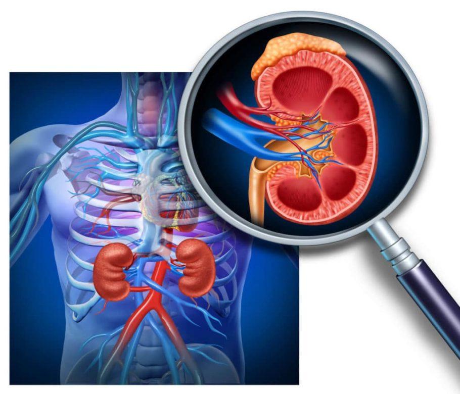 Артериальное давление нормализуется после устранения основного заболевания