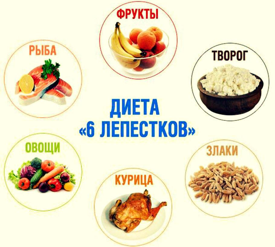 рисунок диета 6 лепестков