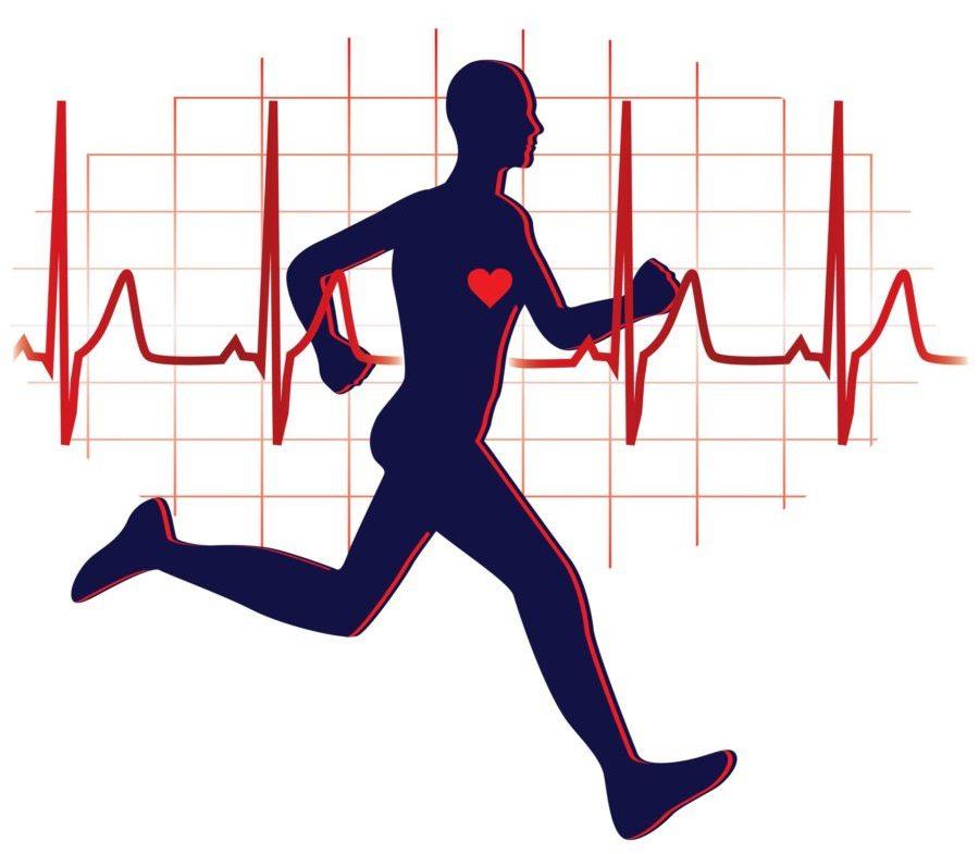 Рисунок: бегущий человек и пульс