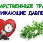 Лекарственные травы понижающие давление