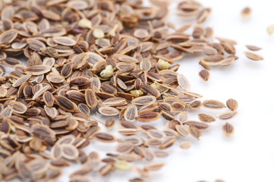 Семена укропа при гипертонии действуют как сосудорасширяющее средство, усиливают питание мозга и сердечных мышц