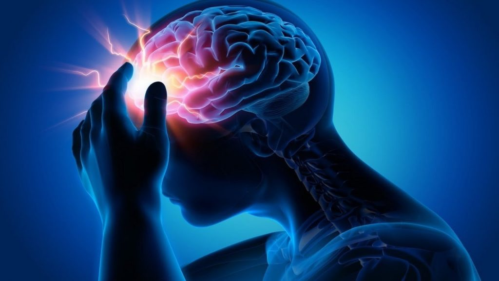 Рисунок мозга человека