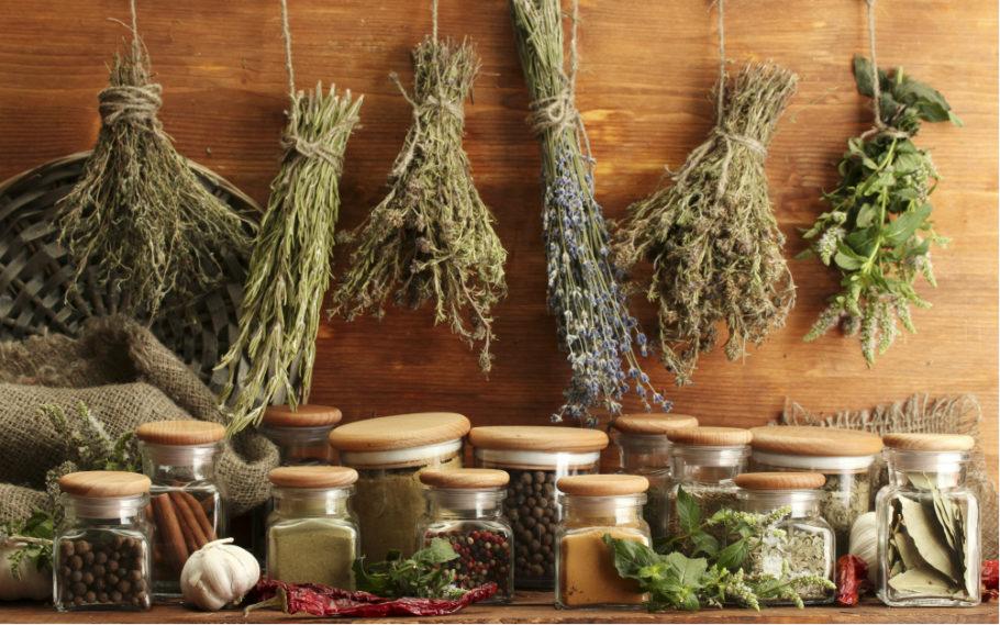 лечебные травы на просушке