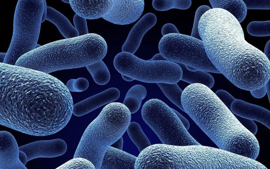 Современный сперматоцистит все чаще вызывается стрептококком, стафилококком, кишечной палочкой