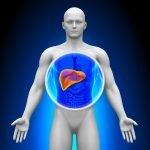 Киста правой доли печени: основные проявления и тактика лечения